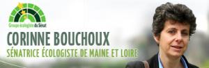 Bouchoux